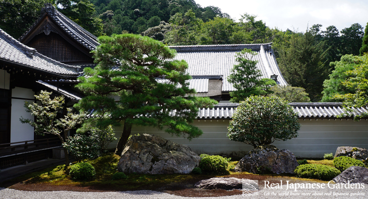 Nanzen Ji Real Japanese Gardens
